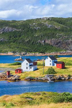 CLKFV112992 Burden�s Point, Salvage village, east coast of Newfoundland, Canada