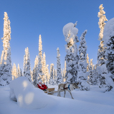 CLKGP111766 Santa Claus on the sleigh with reindeer (Ruka, Kuusamo, Northern Ostrobothnia region, Lapland, Finland, Europe) (MR)