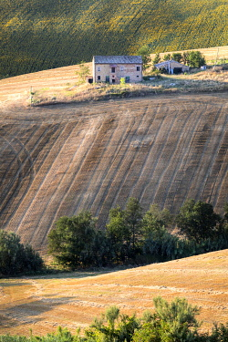 CLKFR107510 Marchigian's rural landscape , Morrovalle village, Macerata district, The Marches, Italy