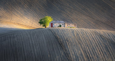 CLKFR109754 Marche's agricultural fields, Montesangiusto village, Macerata district, Marches, Italy