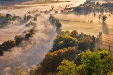 CLKFV112602 The mists of Adda river, Airuno, Adda Nord park, Lecco province, Brianza, Lombardy, Italy, Europe