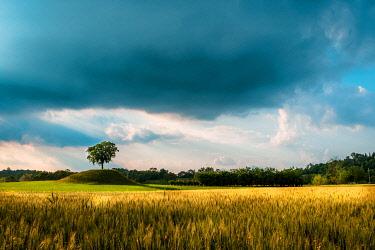 CLKMZ110790 Fields of Friuli in a stormy spring day, Udine province, Friuli Venezia-Giulia region, Italy