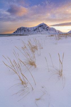 CLKFV107752 Skagsanden beach at dawn in winter. Flakstad, Nordland county, Northern Norway, Norway.