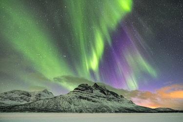 CLKFV107834 Northern lights in the sky above Skoddebergvatnet lake. Grovfjord, Troms county, Northern Norway, Norway.