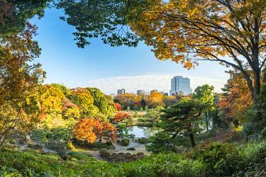 JAP1839AW Rikugien Garden in autumn, Tokyo, Japan