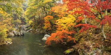 JAP1874AW Shosenkyo Gorge National Park near Kofu city, Yamanashi Prefecture, Japan