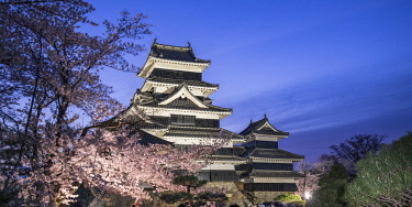JAP1917AW Matsumoto Castle park in spring during the Sakura festival, Nagano Prefecture, Honshu, Japan