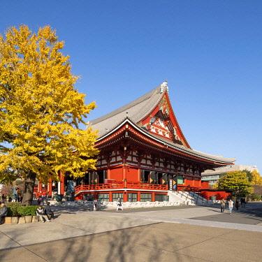 JAP1946AW Main hall of the SensÅ-ji temple in autumn, Asakusa, Tokyo, Japan