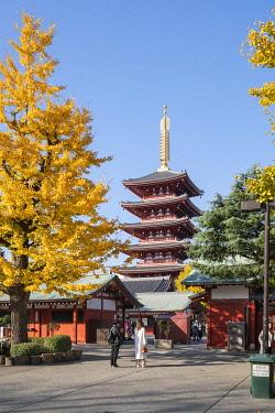 JAP1947AW Five-story pagoda at the SensÅ-ji buddhist temple in autumn, Asakusa, Tokyo, Japan
