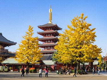 JAP1949AW Five-story pagoda at the SensÅ-ji buddhist temple in autumn, Asakusa, Tokyo, Japan
