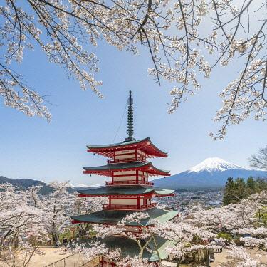 JAP1974AW Chureito Pagoda of the Arakura Sengen Shrine with Mount Fuji in spring, Fujiyoshida, Yamanashi Prefecture, Japan