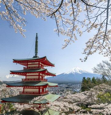 JAP1976AW Chureito Pagoda of the Arakura Sengen Shrine with Mount Fuji in spring, Fujiyoshida, Yamanashi Prefecture, Japan