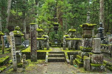 JAP1985AW Japanese family grave at the Okunoin Cemetery in Koya, Kansai region, Honshu, Japan