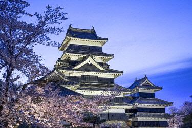 JAP1998AW Matsumoto Castle park in spring during the Sakura festival, Nagano Prefecture, Honshu, Japan