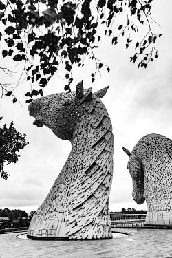 SCO35351 The Kelpies are the largest equine sculptures in the world. Located between Falkirk and Grangemouth in Scotland, The Kelpies� name reflects the mythological transforming beasts that possess the str...
