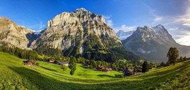 SWI8393AW Grindelwald, Bernese Oberland, Switzerland