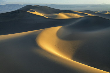 USA14680AW Mesquite Dunes at Sunrise, Death Valley National Park, California, USA
