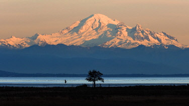CN02YCH0081 Canada, British Columbia, Boundary Bay. Mount Baker from the shoreline at sunset.