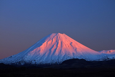 AU03DWA0722 Alpenglow on Mt. Ngauruhoe at dawn, Tongariro National Park, Central Plateau, North Island, New Zealand