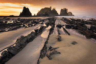 US48BJY1123 USA, Washington State, Olympic National Park. Sunrise on coast beach and rocks