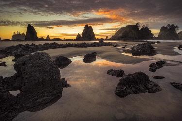 US48BJY1135 USA, Washington State, Olympic National Park. Sunrise on coast beach and rocks