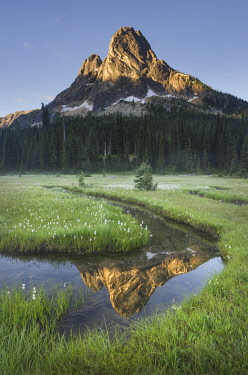 US48AMA0073 Liberty Bell Mountain reflected in waters of State Creek, Washington State Pass meadows, North Cascades, Washington State
