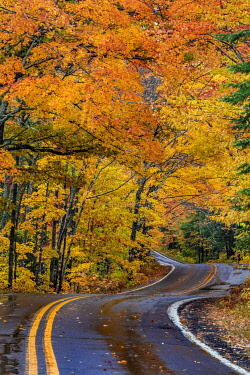 US23CHA0340 Highway 41 covered roadway in autumn near Copper Harbor in the Upper Peninsula of Michigan, USA