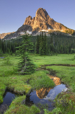 US48AMA0047 Liberty Bell Mountain reflected in still waters of State Creek, in meadows of, Washington Pass. North Cascades, Washington State