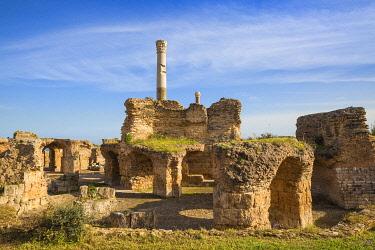 TU163RF Tunisia, Tunis, Carthage, Antonine Baths