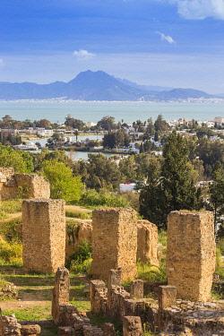 TU02273 Tunisia, Tunis, Carthage, Byrsa Hill