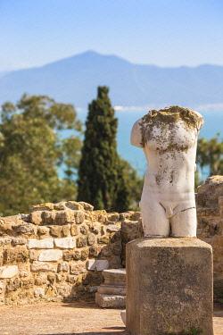 TU02292 Tunisia, Tunis, Carthage, Roman Villas