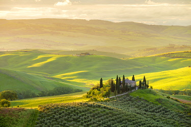 ITA14742AWRF Podere Belvedere at sunrise, San Quirico d'Orcia, Val d'Orcia, Tuscany, Italy, Europe.