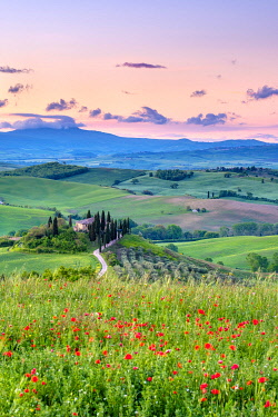 ITA14680AW Podere Belvedere at sunrise, San Quirico d'Orcia, Val d'Orcia, Tuscany, Italy, Europe.