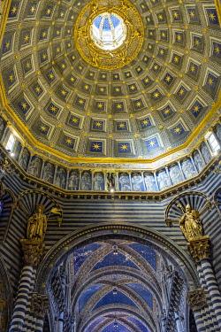 ITA14697AW Duomo di Siena (Siena Cathedral) interior, Siena, Tuscany, Italy, Europe.