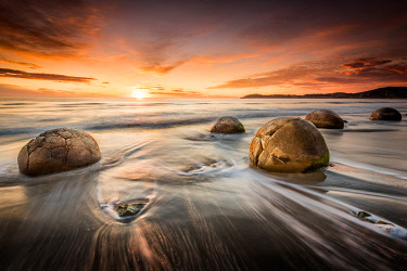 NZ9345AW Sunrise at Moeraki Boulders beach, Otago, South Island, New Zealand