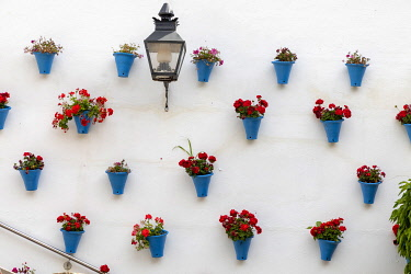 SPA9548AWRF A wall decorated with flowers and blue vases, Cordoba, Andalucia, Spain
