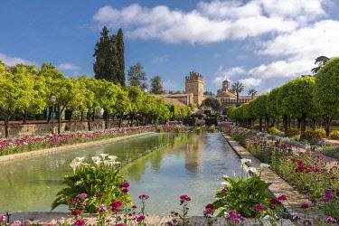 SPA9551AWRF Pool at the Royal Botanical Garden, Alcazar De Los Reyes Cristianos, Cordoba, Andalucia, Spain