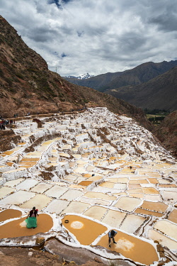 PER34391AWRF Elevated view of workers at Maras salt marsh terraces, Salinas de Maras, Cuzco Region, Peru