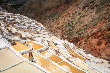 PER34370AW High angle view of workers at Maras salt marsh terraces, Salinas de Maras, Cuzco Region, Peru