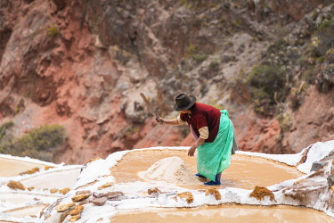 PER34372AW Female worker mining at Maras salt marsh terraces, Salinas de Maras, Cuzco Region, Peru