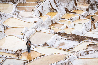 PER34373AW High angle view of female worker at Maras salt marsh terraces, Salinas de Maras, Cuzco Region, Peru