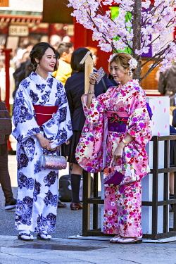 JAP2034 Japanese women in traditional costumes stand adjacent to the Hozomon Gate of the Sensoji Complex, Hanakawado, Tokyo To, Japan.