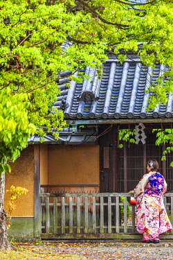 JAP2074 A Japanese woman in traditional costume stands in the Shinto Fushimi Inari Taisha Shrine, Fukakusa, Shimoseya, Kyoto Fu, Japan.