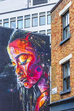 UK11708 UK, England, London, Hackney, Shoreditch, New Inn Road, mural by Mr Cenz and Lovepusher