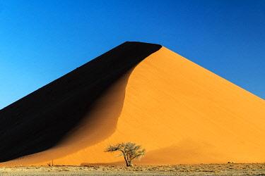 NAM6623AWRF Sand dune, Namib-Naukluft National Park, Sesriem, Namibia