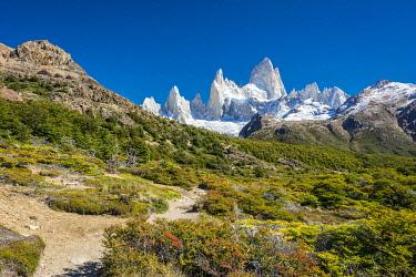 ARG3122AWRF Fitz Roy mountain, Sendero al Fitz Roy, UNESCO, Los Glaciares National Park, El Chalten, Santa Cruz Province, Argentina
