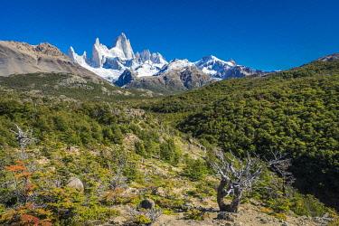 ARG3114AW Fitz Roy mountain, Sendero al Fitz Roy, UNESCO, Los Glaciares National Park, El Chalten, Santa Cruz Province, Argentina