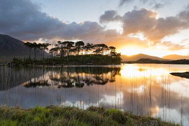 HMS3332986 Ireland, County Galway, Connemara National Park, Derryclare Lake at sunrise