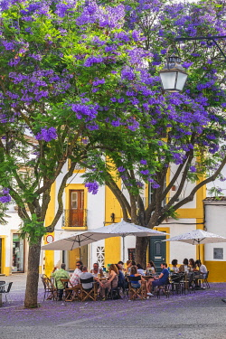 HMS3358499 Portugal, Alentejo region, Evora, UNESCO World Heritage site, Largo de Alvaro Velho, café terraces under the jacarandas in bloom