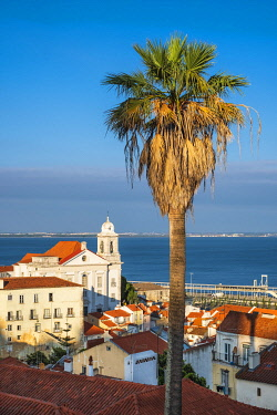 HMS3358612 Portugal, Lisbon, view over the rooftops of the Alfama district from the terrace of Largo das Portas do Sol, the church Santo Estevao and the Tage river